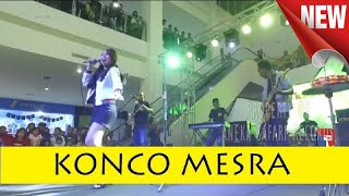 Konco Mesra - Happy Asmara ( Official Music Video ANEKA SAFARI )
