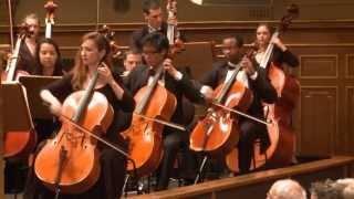 """Wagner GÖTTERDÄMMERUNG """"Siegfrieds Rheinfahrt"""" - AIMS Festival Orchestra - Gerrit Prießnitz"""