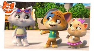 44 Con Mèo | Các khoảnh khắc tuyệt cú mèo của tập phim 22 [CLIP]