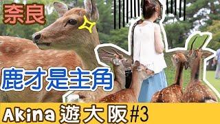 2016年9月14日旅程圖文版: https://goo.gl/sC1iv3 Video Edit: 峰-----...