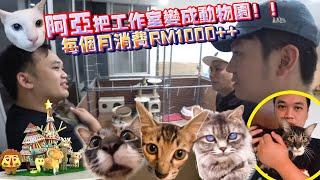 他是我认识最有爱心的马来西亚Youtuber,把工作室变成动物园,每个月消费RM1k ++