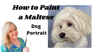 How to paint a Maltese Dog Portrait in Oils with Suzanne Barrett Justis