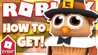 [EVENT] How to get the OWL BUDDY | Roblox Rollernauts