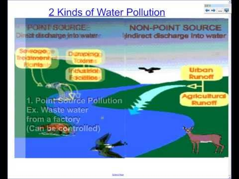 Water Pollution and Sewage Treatment notes