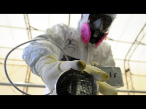 Truth About Fukushima Fallout + Energy and with Nora Maccoby