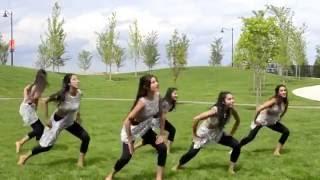 Baby Ko Bass Pasand Hai - Sultan - Soul Feet Dance Choreography - Bollywood Dance