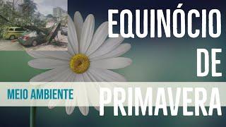 O que é o Equinócio? - Ventos fortes no Rio de Janeiro anunciam a chegada da Primavera 2021