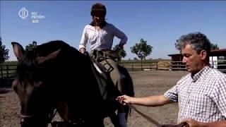 A lovaglás, mint tantárgy – a jászalsószentgyörgyi iskolában