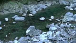 日本の「秘境」を往くー熊本県五家荘から五木村へ(川辺川沿)