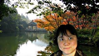 College Mandarin Chinese Curriculum Advanced Level 1