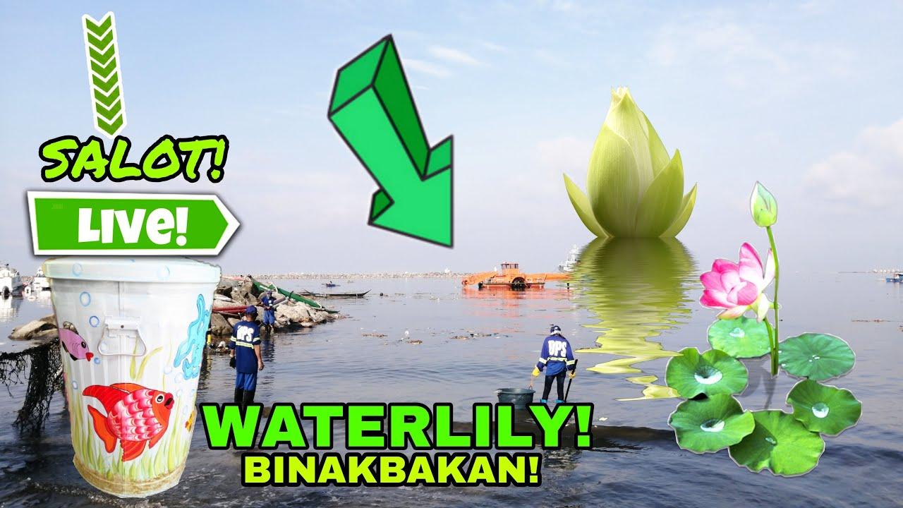 Download MALAKAS ANG ALON NG DAGAT! SINUGOD NG DPS MANDARAGAT! MANILA BAY UPDATE