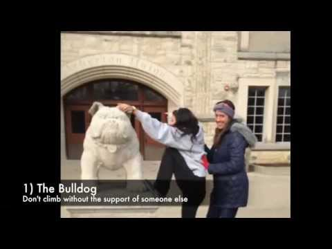 Here's to General Safety Around Butler University