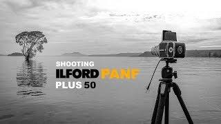 ilford Pan F Plus  Hasselblad 500C/M