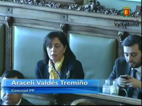 Intervención Araceli Valdés. Pregunta Comedores Escolares Semana Santa.  Pleno Valladolid (1-3-2016)