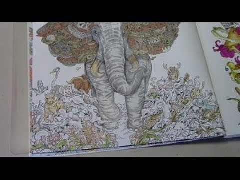 Download ADULT Color & Chat  Imagimorphia   Derwent Artist pencils