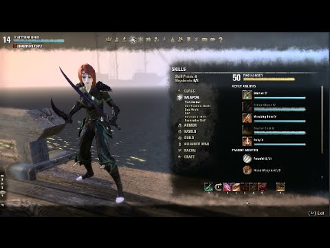 ESO Nightblade Stamina Build Dual Wield and Two Handed - YouTube