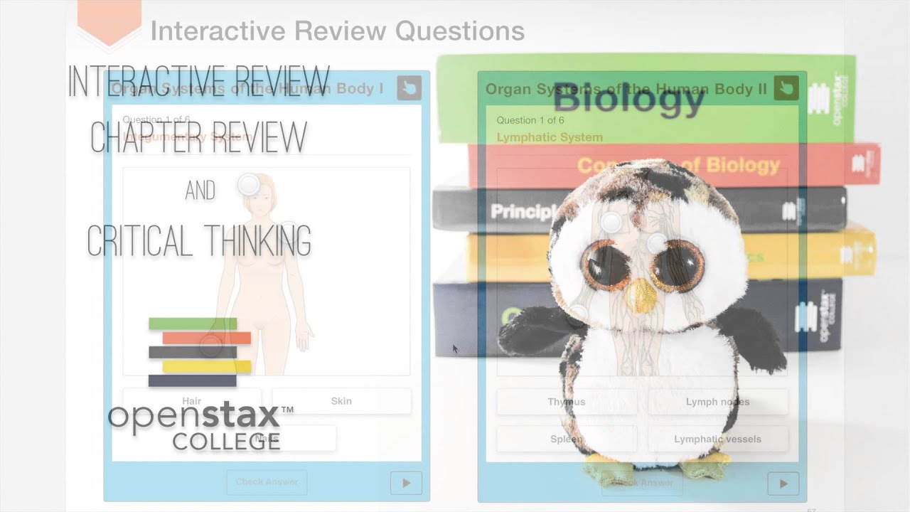 Anatomy and Physiology in the iBookstore: So much more than an .epub ...