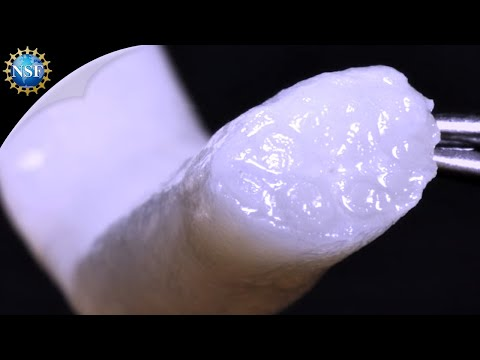 Helping the body regrow nerves - Science Nation