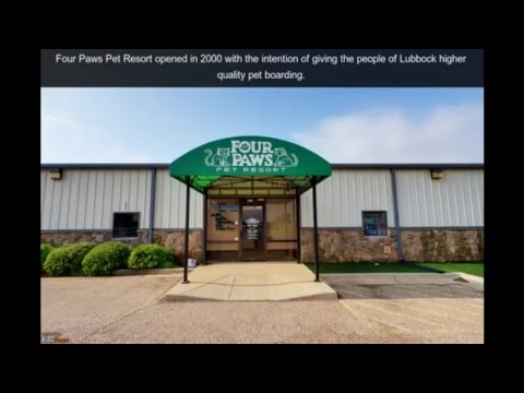 Four Paws Pet Resort in Lubbock Texas | (806) 793-9526