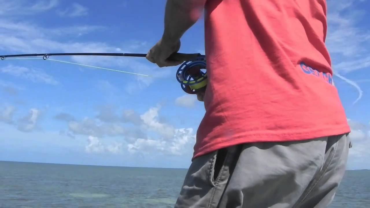 Cheeky fly fishing and bob beighley of double haul for Cheeky fly fishing