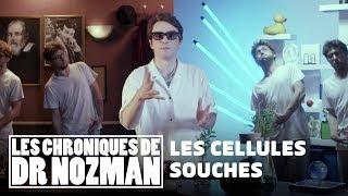 Les cellules souches | Les Chroniques de Dr Nozman - Science & Vie TV