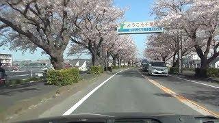 埼玉県道29号 02 草加流山線 草加→流山 車載