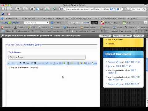 How to make a forum post on Wordpress