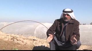 المزارعون العراقيون يعودون إلى أراضيهم في محافظة الأنبار بعد طرد الجهاديين