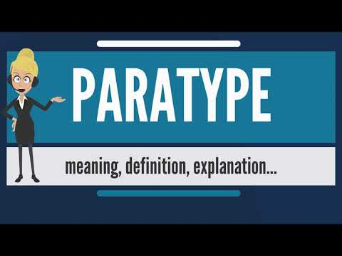 What is PARATYPE? What does PARATYPE mean? PARATYPE meaning, definition & explanation