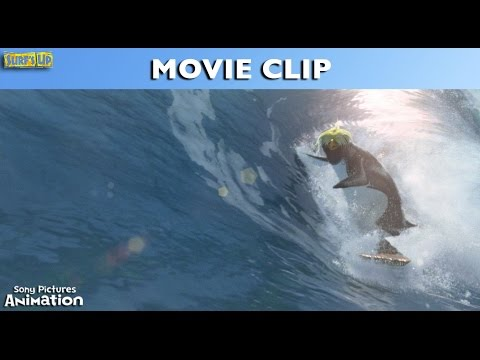 Surf's Up - Riding Inside The Wave
