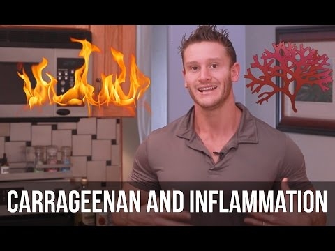 The Truth About Almond Milk | What is Carrageenan? - Thomas DeLauer