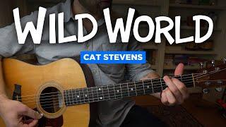 Wild World by Cat Stevens (guitar lesson)