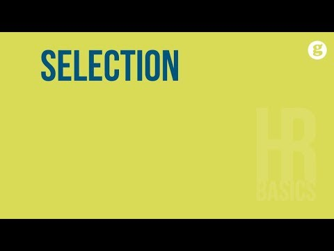 HR Basics: Selection