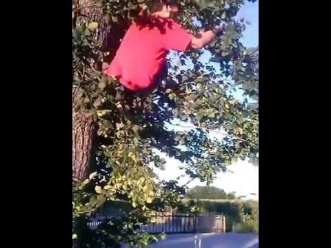 Ahmed wchodzi na drzewo (cz.2)
