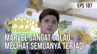 CAHAYA TERINDAH - Marvel Sangat Galau Melihat Kejadian Itu [11 November 2019]