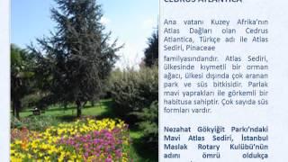 Gambar cover İstanbul Maslak Rotary Kulübü 2012-2013 Devir Teslim Sunumu