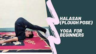Halasan Yoga | Plough Pose | Benefits | Yoga for beginners by Anil Kumar Pandey