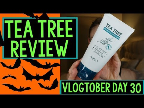 Vlogtober Day 30: SKINFOODS TEA TREE SKIN CARE REVIEW|Dr Dray