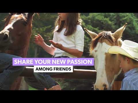 Royale Equestrian Centre - Lessons