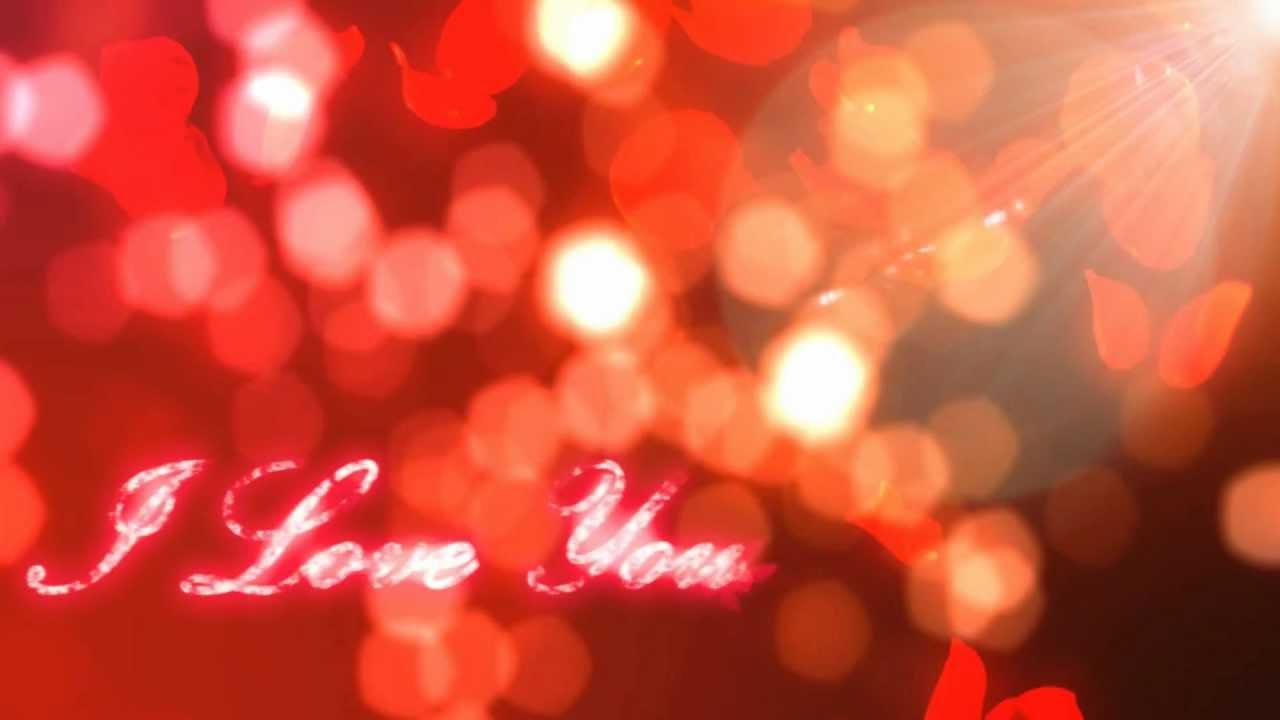 "... Love You"" Rose Petals Valentine's Day Motion Graphic Free Download"