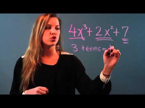 How To Describe A Polynomial Equation