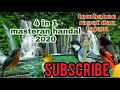 Masteran Handal   Mp3 - Mp4 Download