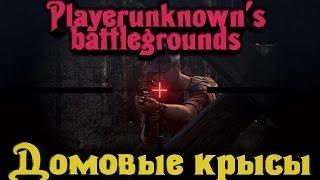 Playerunknown's Battlegrounds - Домовые крысы