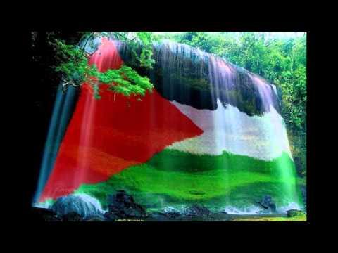 palestine photo