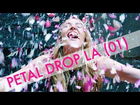 Petal Drop LA