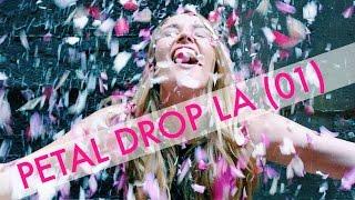Petal Drop LA (01) // 7,000 Cups of Pink Rose Petals Dropped in DTLA