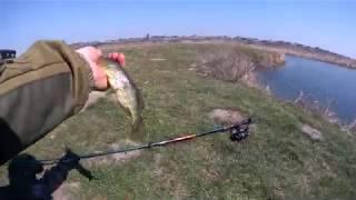 щука монстр рыба в Украине