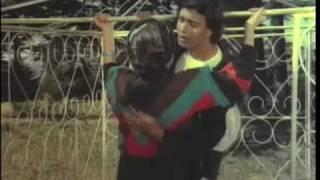 Mithun Chakraborty Song - Milke Na Honge Juda