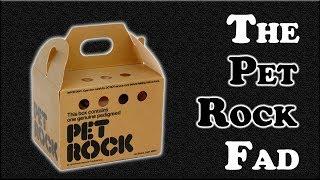 The Pet Rock Fad - As Crazy as It Sounds?