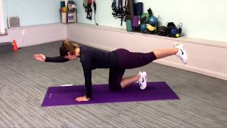 Technique Tuesday - Bird Dog for Core Activation